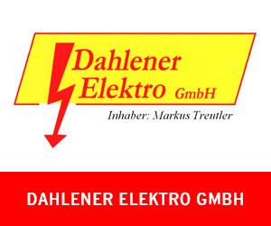 web_dahlener_elektro_vorlage